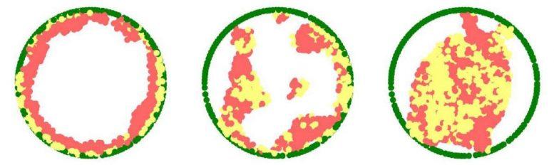 3D Chromatin Simulations